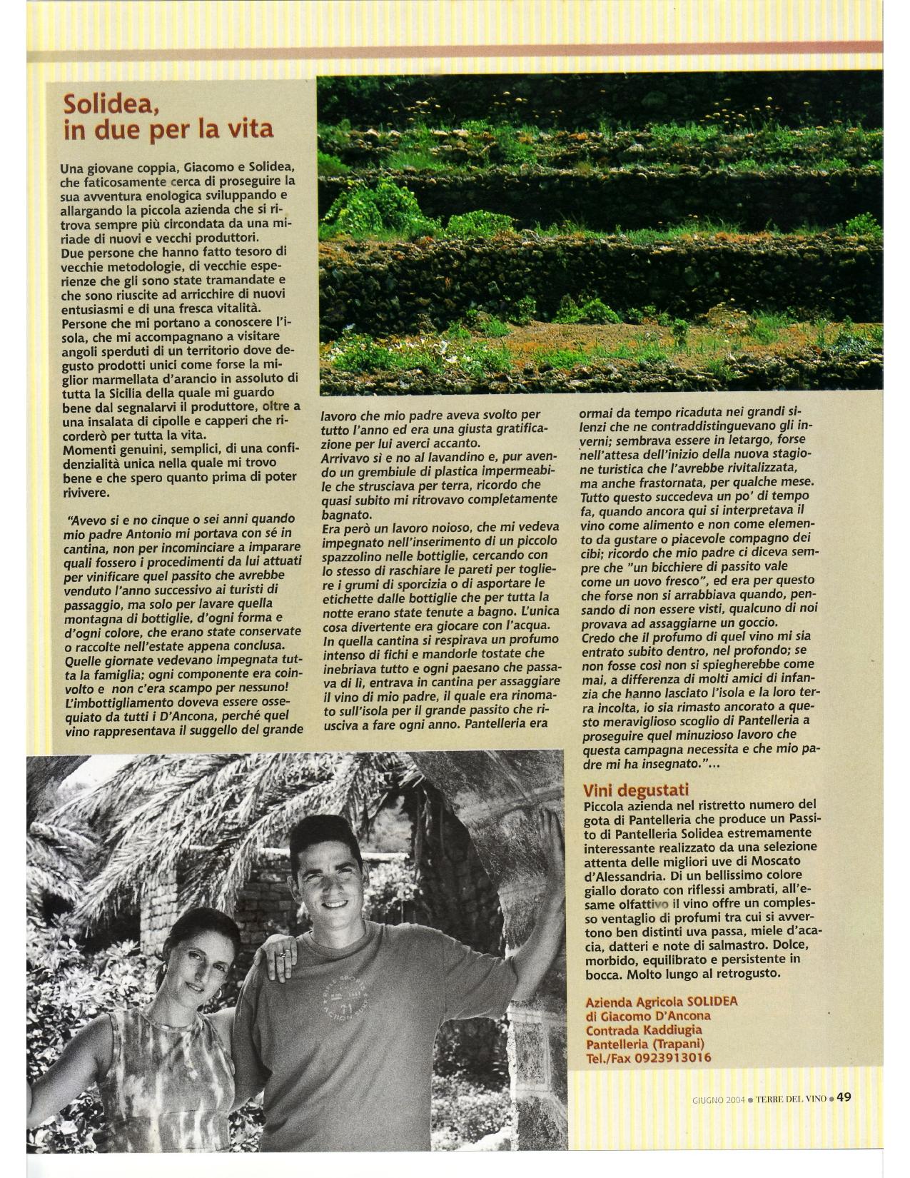 terre del vino azienda agricola solidea
